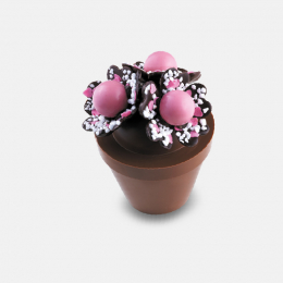 Bouquet à croquer super maman 265g